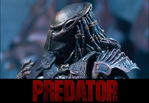 predator_photo